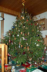 2006/12/23/103.jpg