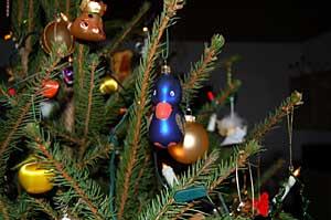 2006/12/23/107.jpg