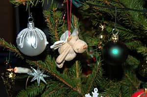 2006/12/23/109.jpg
