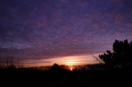 2008/12/28/003.jpg