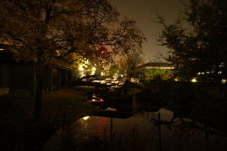 2010/10/29/243.jpg
