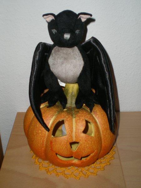 2010/10/31/106.jpg