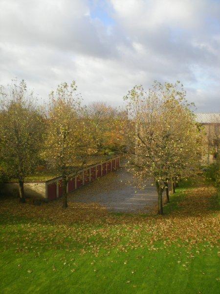 2010/11/03/002.jpg