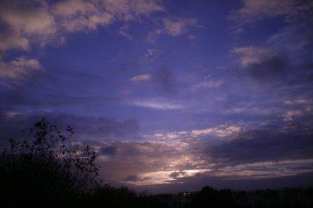 2010/11/05/104.jpg