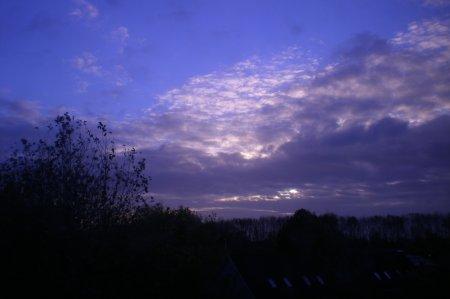 2010/11/05/106.jpg