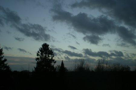 2010/11/13/403.jpg