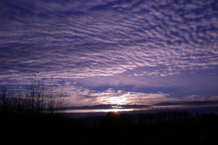 2010/11/15/004.jpg