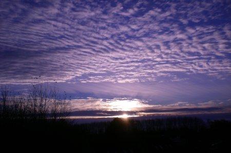 2010/11/15/005.jpg