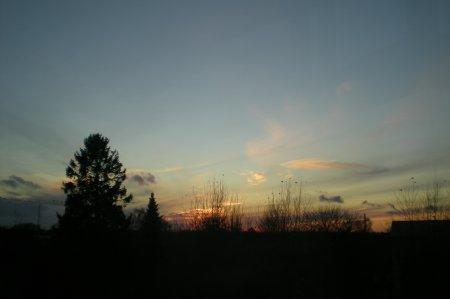 2010/11/15/203.jpg