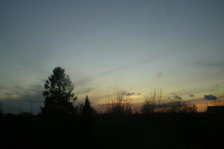 2010/11/15/204.jpg