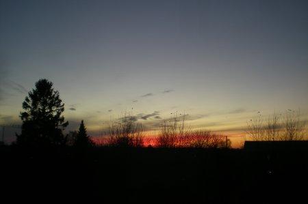 2010/11/15/207.jpg