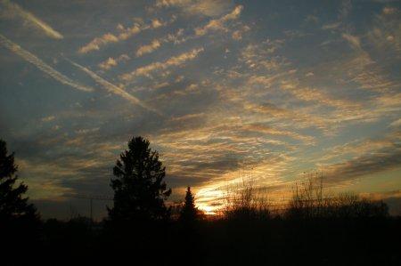 2010/11/16/102.jpg