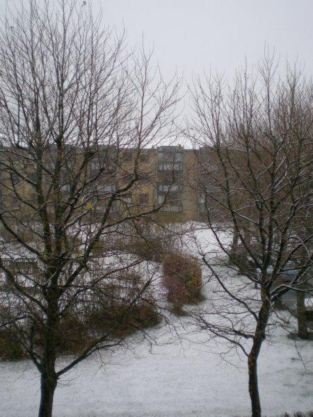 2010/11/19/001.jpg